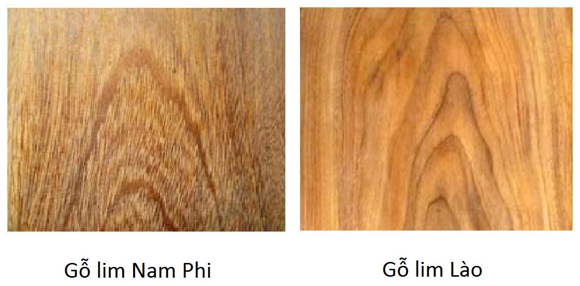 Cách nhận biết, phân biệt gỗ lim Nam Phi với gỗ lim Lào